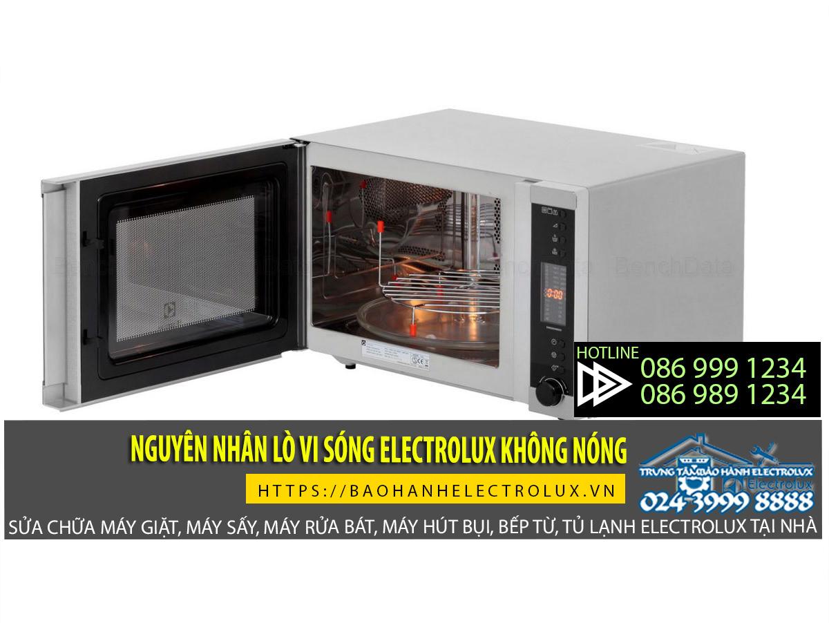 Lo-vi-song-electrolux-khong-nong-nguyen-nhan-dan-den-su-co-loi