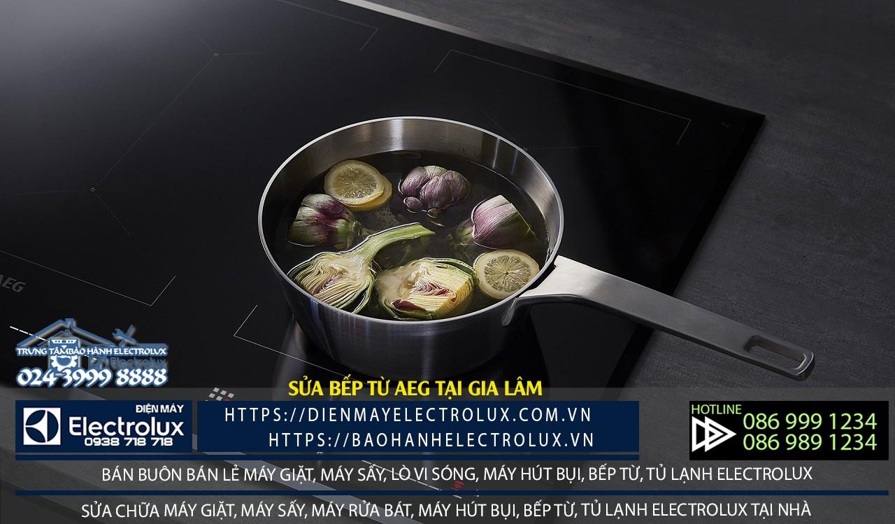 Dịch vụ sửa bếp từ AEG tại Gia Lâm chính hãng